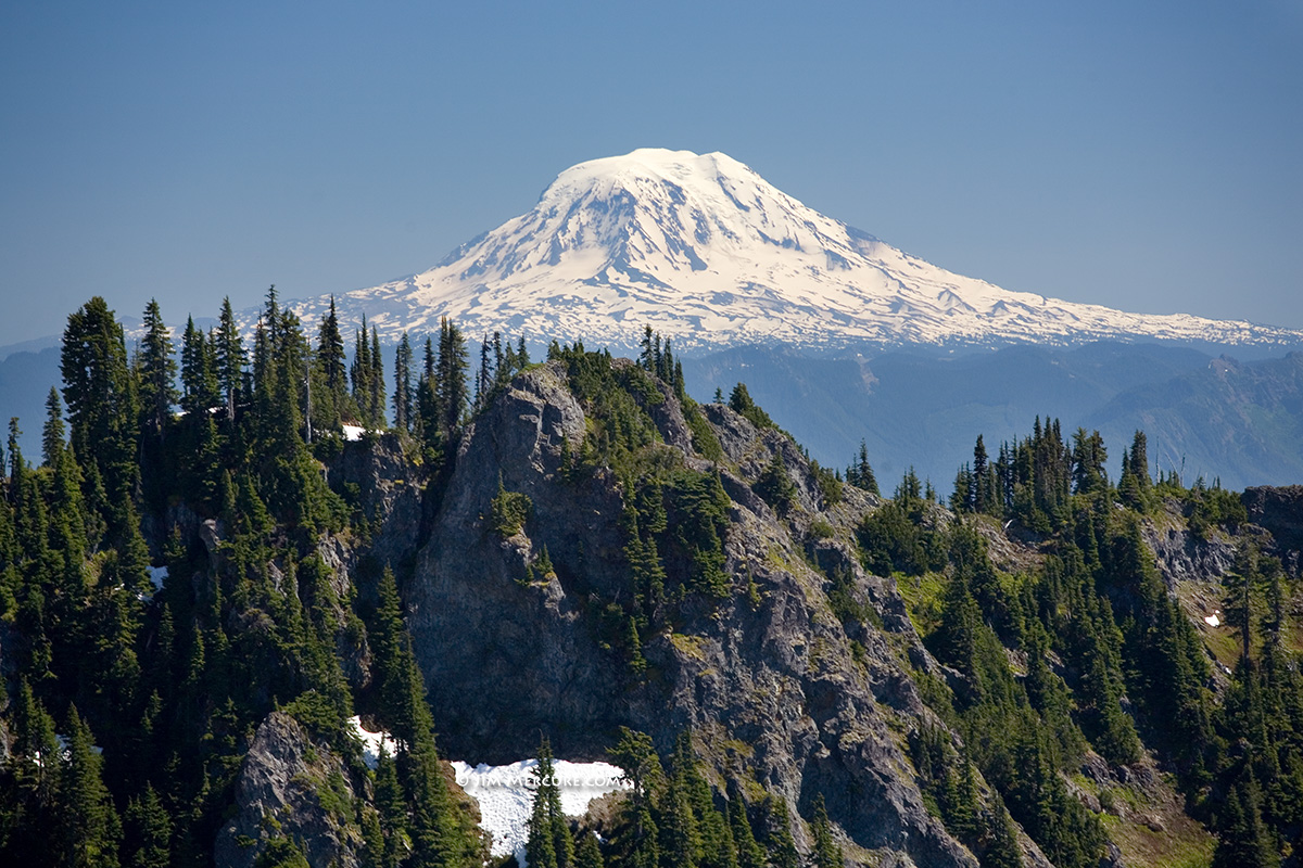 View of Mt. Adams from Eagle Peak - Mt. Rainier